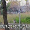 Predio Ex Agrocom: ¡¡¡ Lleva más de 1 año sin limpiarse !!!  ¿¿¿ Otra vez la desidia ????
