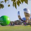 Comprometidos con una Ciudad más verde y sostenible